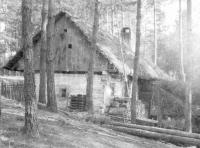 pena-pazderna-friedl-u-rybnika-1900